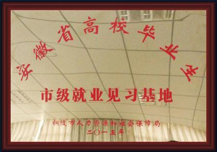 安徽省高校毕业生市级就业见习基地